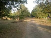 plot available for sale at Veshnodevi Circle in R-1 zone